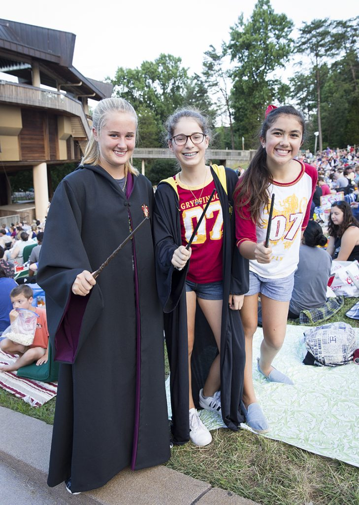 Harry Potter and The Sorcerer's Stone in Concert, National Symphony Orchestra, NSO, July 8, 2017