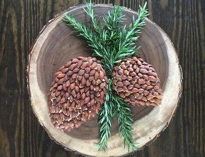 crop_pineconecheeseballhirez