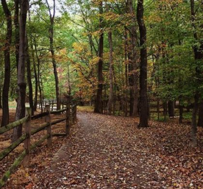 Take a hike!… At Wolf Trap