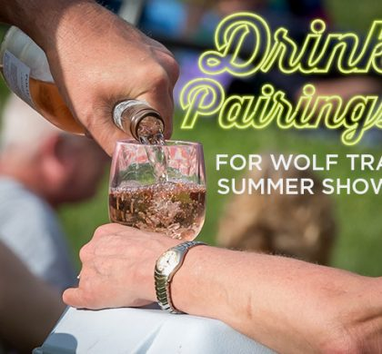 Drink Pairings for Summer Shows